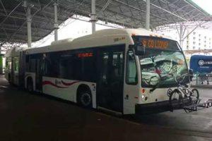 Bus MCO